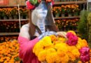 Arranca venta de flor de cempasúchil en centros comerciales